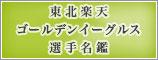 東北楽天ゴールデンイーグルス選手名鑑